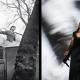 Les éditions Light Motiv présentent au CITL «Un Lion derrière la vitre», projet éditorial et musical
